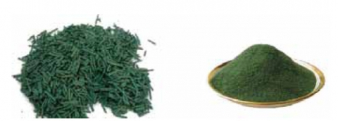 Figure 1. Spirulina flakes and powder