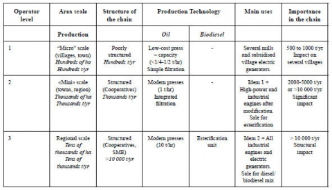 Table 1. Classification of jatropha biofuel operators.