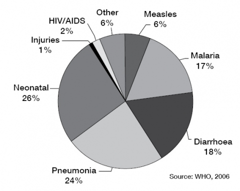 Figure 1. Causes of under-5 mortality in Mali