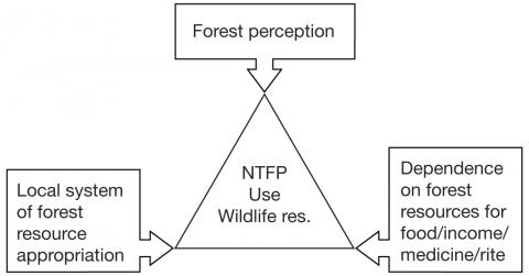 Figure 2 Factors affecting the sustainability of the uses of non-timber forest products (NTFP) and wildlife resources in Southeast Cameroon.