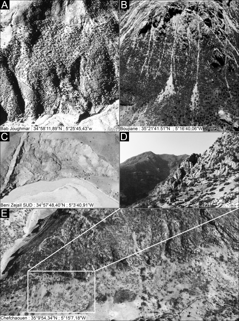Fig. 9 – Extraits d'images satellitaires de MG inventoriés. Fig. 9 – Extracts from satellites images of inventoried MW.