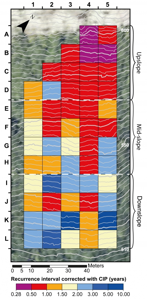 Dendrogeomorphic Assessment Of Rockfall Recurrence Intervals