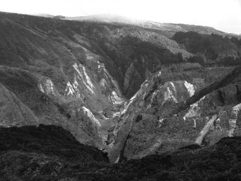 Fig. 8 – View of the Ribeira Grande watershed on the northern flank of Fogo showing extensive landslide scars from the summer 2005 seismic activity. Length of valley about 1 km.Fig. 8 – Vue du basin versant de Ribeira Grande sur le flanc nord du volcan Fogo, montrant de nombreuses et grandes cicatrices de glissements de terrain déclenchés par l'activité sismique de l'été 2005. La longueur de la vallée est d'environ 1 kilomètre