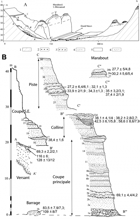 Fig. 7 – Coupes de Sidi Messaoud et situation stratigraphique des échantillons datés. Fig. 7 – Sections of Sidi Messaoud and stratigraphic location of dated samples.