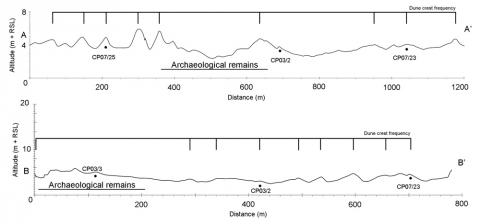 Fig. 4 – Dune ridge topographic transects. Fig. 4 – Transects topographiques des cordons dunaires.