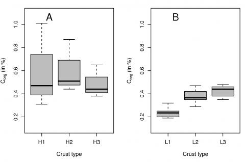Fig. 9 – Boxplot of soil organic carbon contents at Hühnerwasser (A) and Neuer Lugteich (B). Fig. 9 – Teneur en carbone organique des sols à Hühnerwasser (A) et à Neuer Lugteich (B).
