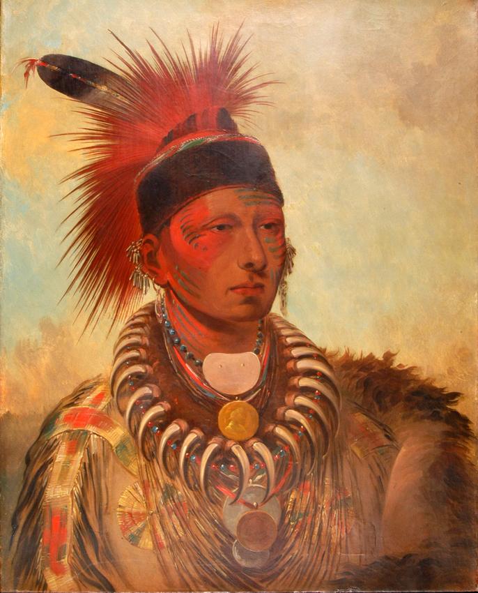 Exceptionnel Genèse d'une arche américaine pour les Indiens ZJ85