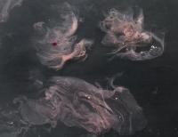 Semina Aeternitatis - Microbial cellulose growing in saline solution (2016)