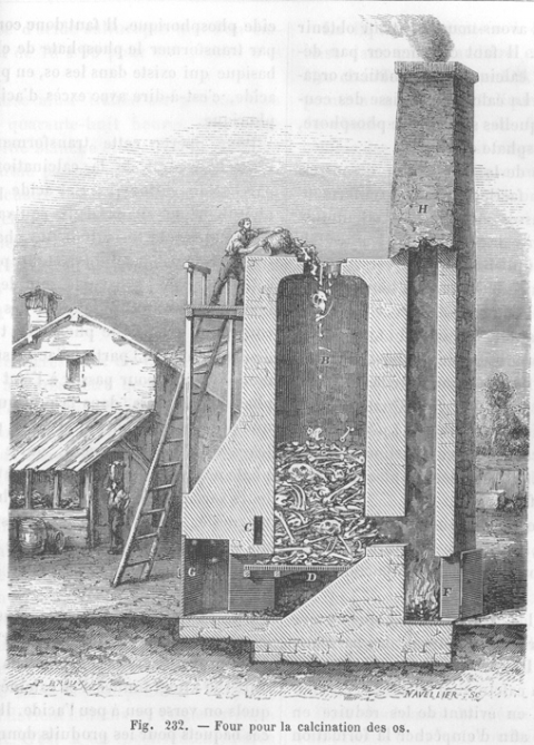 Rune Factory 4 datant Margaret