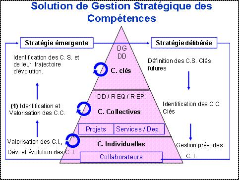 L Articulation Competences Individuelles Competences Strategiques