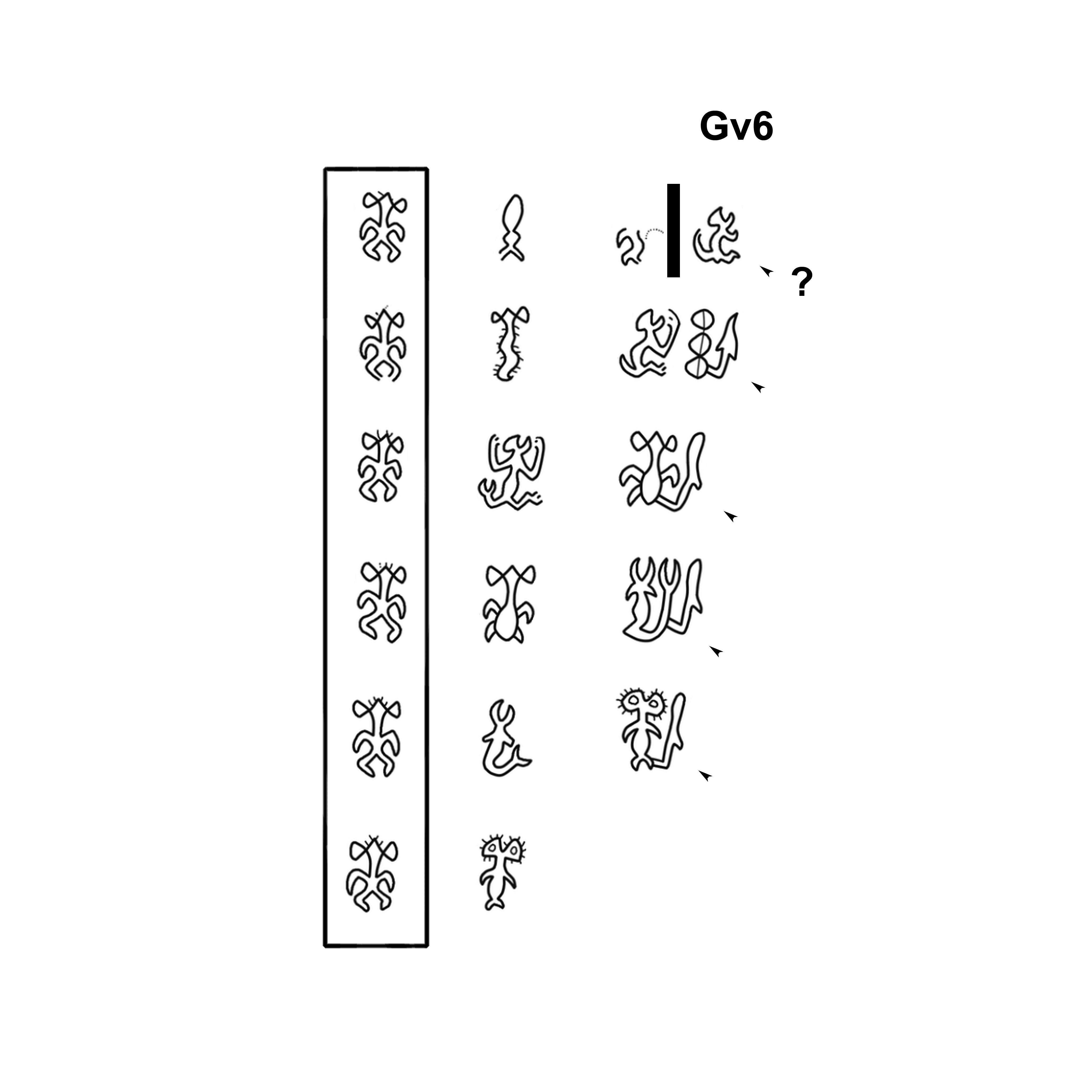 Name in the Kohau Rongorongo script (Easter Island)