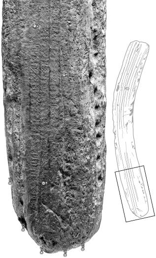 Figure 7. – A section of Berlin rongorongo tablet, Inv. VI4878