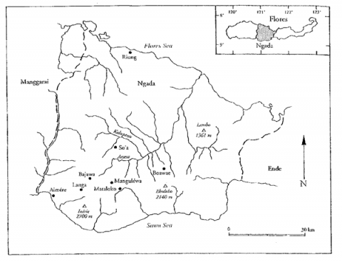 Fig. 1 : Carte du district (kapubaten) de Ngada, Florès