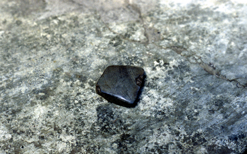 Fig 6: Muktar Tokan's Stones Axe Head