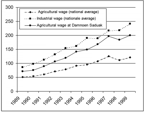 Fig. 5: Evolution of Daily Wages (in 1999 Bahts)
