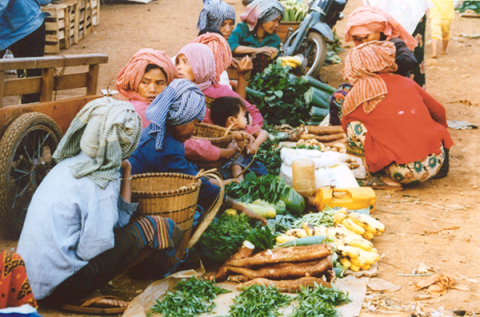 Photo 3: Morning market in Banlung