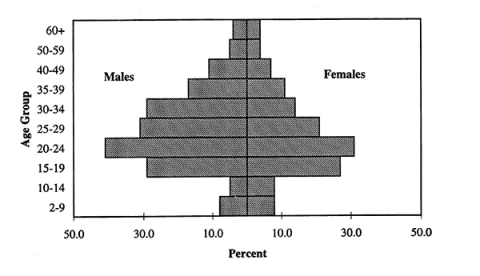 Fig. 1. Thailand: Age-Sex Distribution of Migrants, 1990