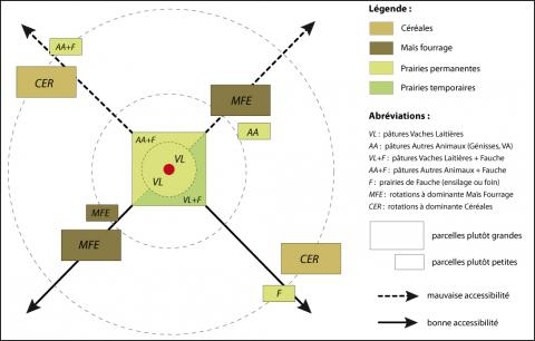 Figure 2 : Modèle d'organisation des exploitations laitières anglaisesOrganizational model of dairy farms in southern England