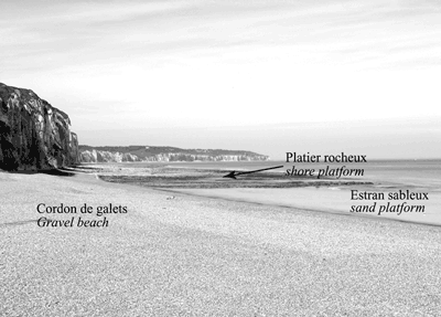 Photo 1 : Le système falaise crayeuse/plate forme/cordon de galets haut-normand (cl. S. Costa)The system of chalk cliff/shore plateform/gravel beach of Haute-Normandy