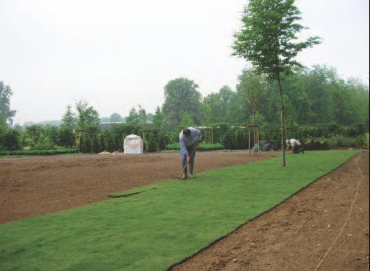 Mosaic quand un jardin raconte des histoires d hommes for Amenagement jardin simple