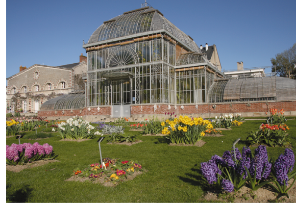 La mise en place des politiques publiques au Jardin botanique de Nantes