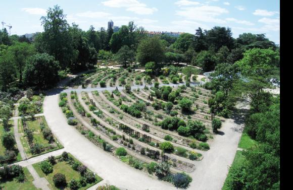 Mus ums jardins botaniques et d veloppement durable - Jardin botanique de lyon ...