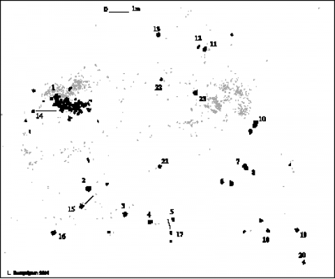 Fig. 15 - Répartition des blocs (en noir) sur la surface d'occupation moustérienneFig. 15 - Map distribution of stones (in black) in excaved area of the mousterian site of La Folie