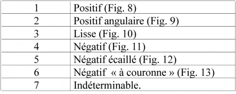 Tableau 8 – Liste morphologique des bulbesTable 8 - Bulbs morphology