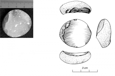 Figure 10 - Morphologie du bulbe 3 : lisse (photo G. Gratton)Figure 10 - Bulbar morphology 3: flat (picture by G. Gratton)