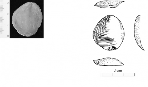 Figure 20 - Position des écaillures 2 : opposées, même surface (photo G. Gratton)Figure 20 - Scales position 2 : opposed on same surface (picture by G. Gratton)