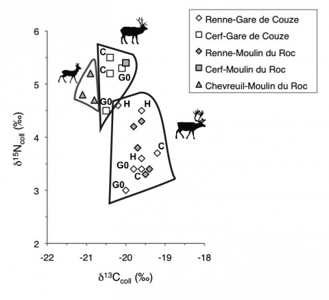 Figure 2 - Valeurs de δ13Ccoll et δ15Ncoll des restes osseux de Renne (Rangifer tarandus), Cerf (Cervus elaphus) et Chevreuil (Capreolus capreolus) des sites de La Gare de Couze (couches C, G0 et H) et du Moulin du Roc (couche brune-bigarrée).Figure 2 - δ13Ccoll and δ15Ncoll values of reindeer (Rangifer tarandus), red deer (Cervus elaphus) and roe deer (Capreolus capreolus) from the sites of La Gare de Couze (level C, G0 and H) and Le Moulin du Roc (layer brune-bigarrée).