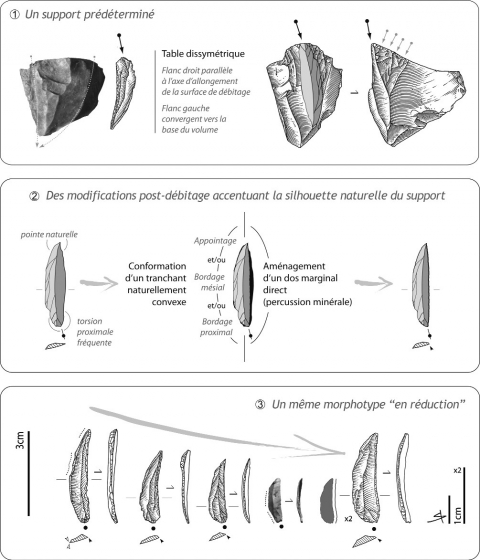 Figure 13 - De la production à la transformation des lamelles dextrogyres, une composante originale de la couche 4 du Petit Cloup Barrat.Figure 13 - From the production to the transformation of the bladelet with right-hand and marginal back blanks: an original component of the layer 4 lithic industry.