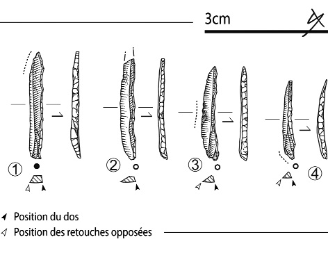Figure 17 - Lamelles à dos dextre étroites.Figure 17 - Narrow and right-hand backed bladelets.