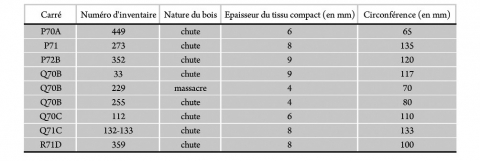 Tableau 12 - Bois de chute et de massacre. Circonférence et épaisseurs de tissu compact.Table 12 - Circumference and compacta thickness measurements of shed and unshed antler bases.