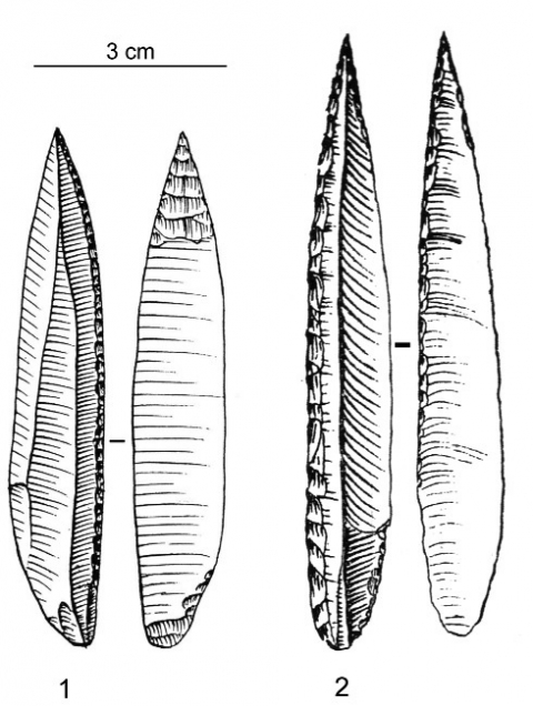 Figure 1 - Pointes des Vachons.Figure 1 - Vachons point.