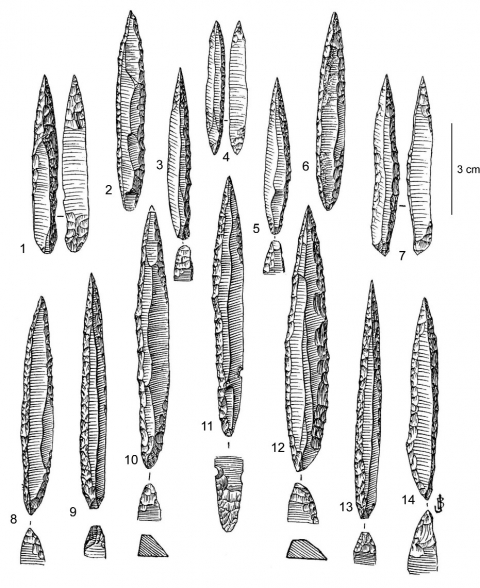 Figure 3 - Pointes des Vachons d'Isturitz, niveau IV.Figure 3 - Vachons points from Isturitz, level IV.