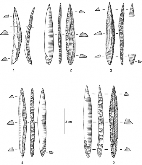 Figure 4 - Pointes des Vachons d'Isturitz, niveau IV/F3.Figure 4 - Vachons points from Isturitz, level IV/F3.