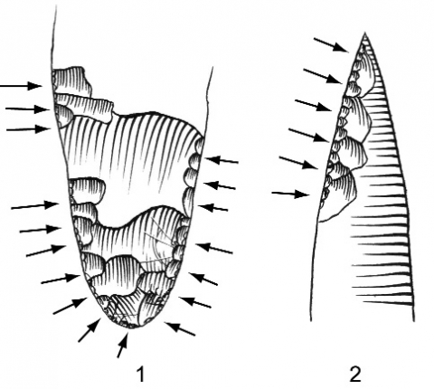 Figure 6 - Corrélation entre l'envahissement de la retouche inverse rasante et la morphologie de l'extrémité.Figure 6 - Correlation between low angle inverse retouch invasion and extremity morphology.