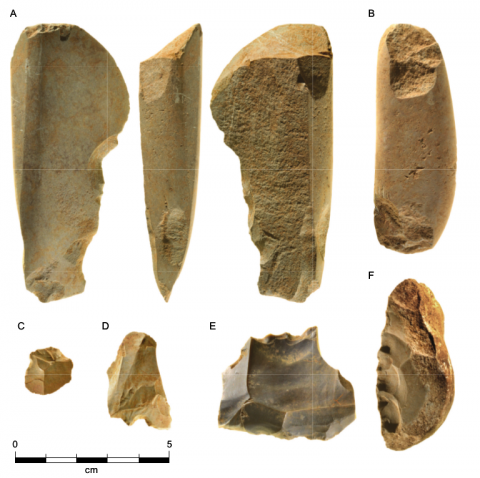 Figure 20 - Excavated stone tools from Waredaru