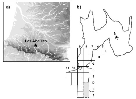 Figure 1 - a) Location of Les Abeilles and b) layout of the cave and excavation grid (modified from Laplace et al. 2006). The second test pit is shown in grey.