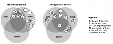 Figure 12 - Status of the exploited species in the Aurignacian layers at les Abeilles. Abbreviations: alim. = food; utilit. = utilitarian.