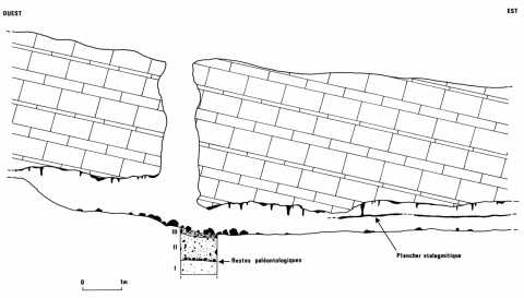 Figure 6 : Coupe schématique de l'aven des Fourches II et son remplissage karstique.Figure 6: Schematic section of the sinkholes of Les Fourches with karstic infilling.