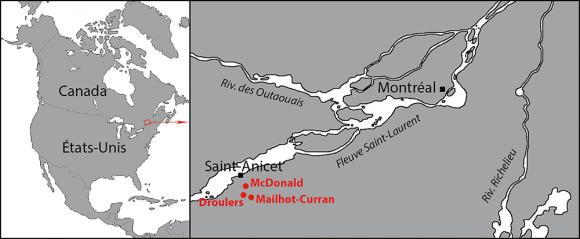 sites de datation basés à Toronto