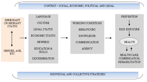 Figure 1. Conceptual model of mechanisms of inequalities in health and safety by foreign-born status