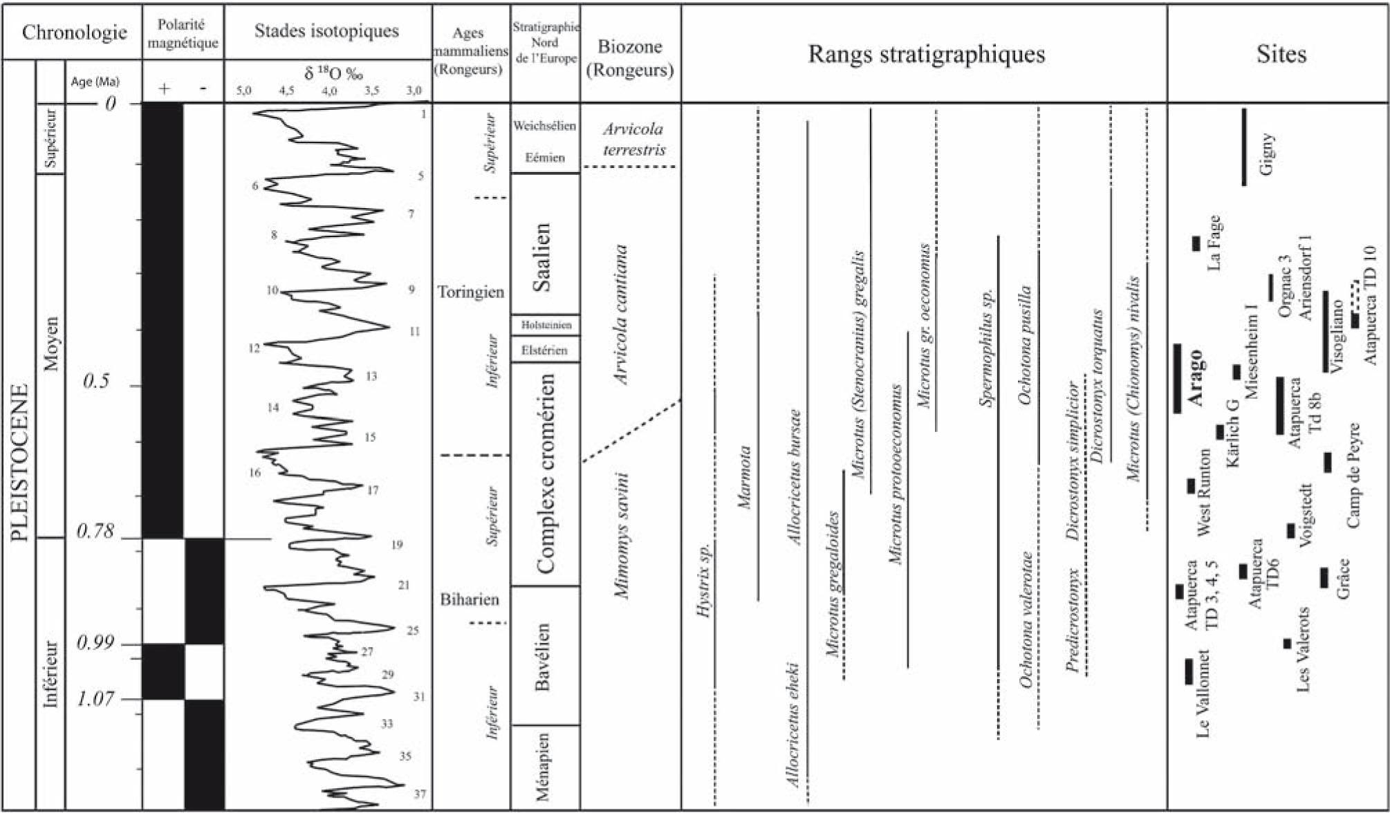 Dating quaternaire sedimenten P2P matchmaking