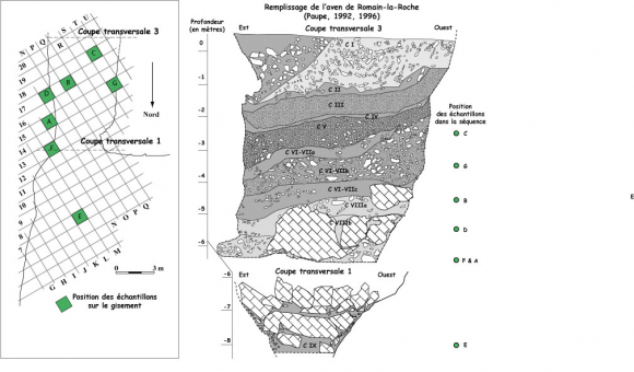 3. Expliquez comment les scientifiques utilisent des datations radioactives pour rapprocher l'âge d'un fossile