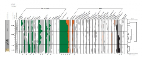 Fig. 9: Palynological diagram of core 28027-A from the La Prenarde-Pifoy mire (Massif Central, France, 1,125 m a.s.l.).
