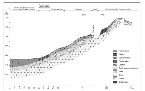 Fig. 3: Example of a topographical and pedological longitudinal section along the eastern slope of the La Prenarde-Pifoy mire (Massif Central, France).