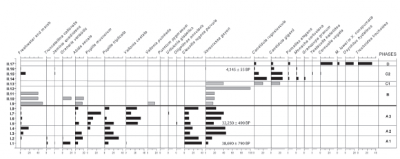 Middle Pleniglacial To Holocene Molluscan Assemblages In The