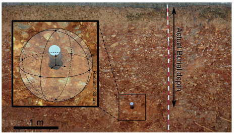 Fig. 2 : Picture showing the collection of a sediment sample by hammering a PVC tube into an outcrop exposure and the measurement of the burial depth.
